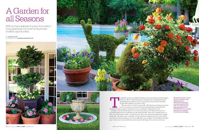 Tucson Lifestyle Magazine - Cover Story